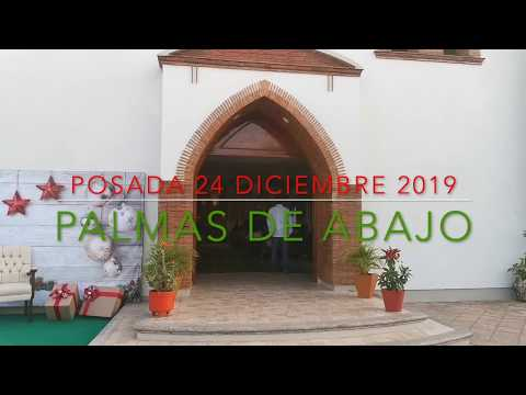 24 DE DICIEMBRE DEL 2019 PALMAS DE ABAJO PARTE 1
