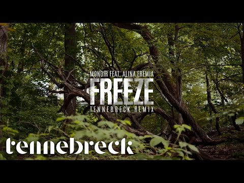 Monoir feat. Alina Eremia - Freeze | Tennebreck Remix | Radio Edit