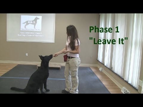 How to Train a Dog to 'Leave It' (K9-1.com)