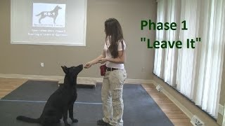 "How To Train A Dog To ""leave It"" (k9-1.com)"
