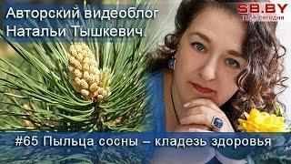 #65 Пыльца сосны – сбор и применение(, 2016-04-12T06:19:03.000Z)
