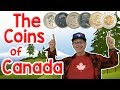 The Coins of Canada | Money Song for Kids | Jack Hartmann