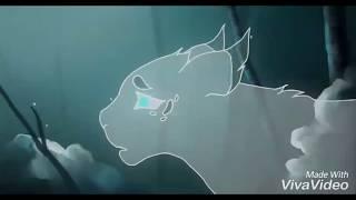 Коты Воители - Avenger.