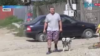Полицейский застрелил агрессивного пса