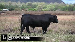 Lot 51 - Telpara Hills VELOCITY  920Q10