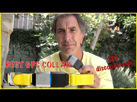 The BEST GPS Collar for Dogs - FI Collar Review - Dog Safety