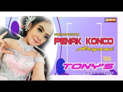 PENAK KONCO // VOC. ARYANI // GARAP KERONCONG // TERBARU DARI TONY'S ELECTONE