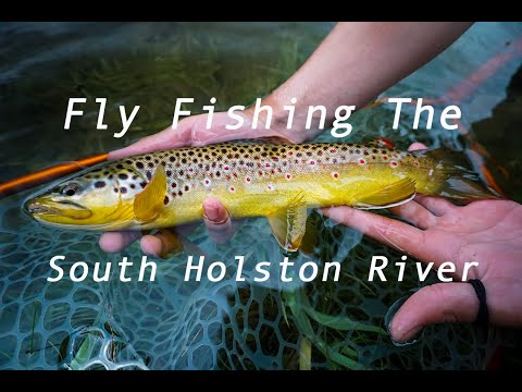 Dry Fly Fishing The South Holston River!