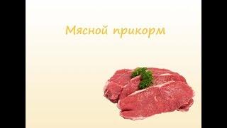 Как приготовить мясной прикорм ребенку