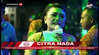 Download lagu DEMEN DEMEN SEPIRA || BUNDA MUMUN || CITRA NADA LIVE MUARAREJA (BP.WARIDI) || TEGAL
