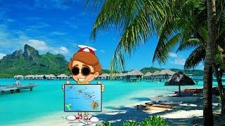 видео Новости Гавайские острова
