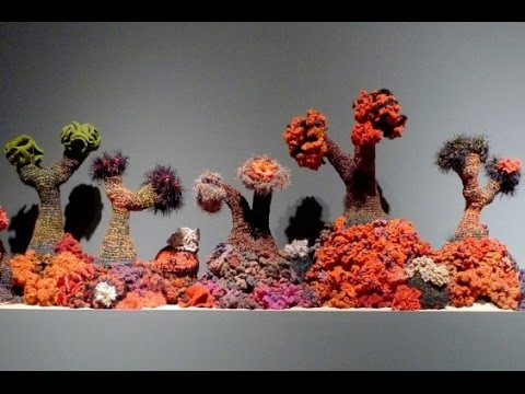 Woolly Wonder: A Yarn about Coral Reefs, Global Warming, Hyperbolic Geometry, and Community Art