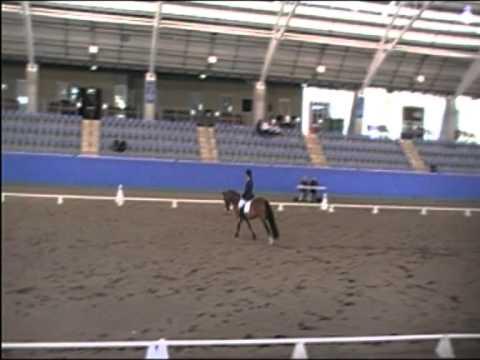 2010 NSW Pony Dressage  Champs. Rockfire U-Turn. Freestyle.