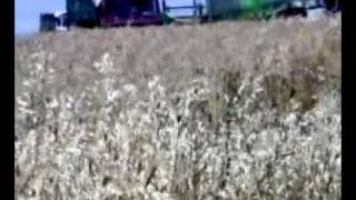 DEUTZ-FAHR 4080 HTS ΝΕΟΧΩΡΙ ΓΡΕΒΕΝΑ NEOHORI GREVENA GREECE 4