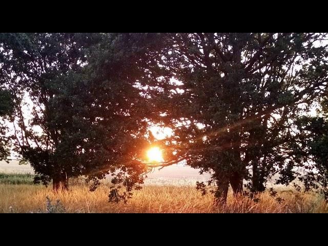 Autumn Equinox Nidra