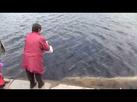 Развеиваем прах сестрички Алечки над Онежским Озером