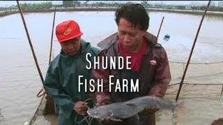 Martin Yan's China: Shunde Fish Farm