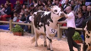 Replay - Dimanche 26 Fevrier CONCOURS NORMANDE