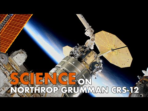 Scientific Investigations Set for Space on Northrop Grumman CRS-12