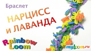 Браслет НАРЦИСС и ЛАВАНДА из резинок Rainbow Loom Bands. Урок 347 | Bracelet Rainbow Loom