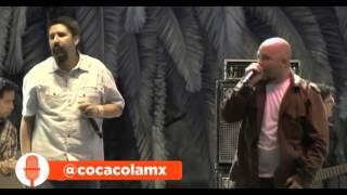 No podría estar mejor - Fermín IV (Vive Latino 2014)