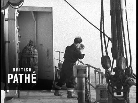 Ocean Weather Ship Record B (1947)
