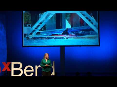 Let's Throw Shamu a Retirement Party   Naomi A. Rose   TEDxBend