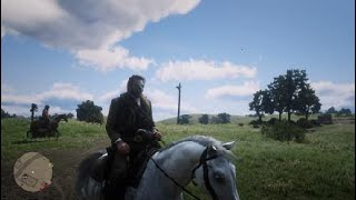 Red Dead Redemption 2_55