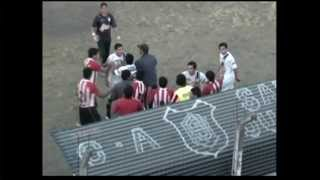 outrage after argentine soccer player throws stray dog into fence
