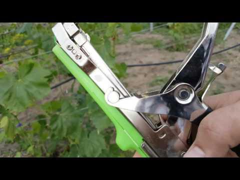 Инструмент для работ на винограднике, степлер для подвязки винограда, как работает.