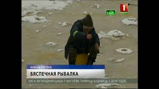 "ТРК ""Могилев"" Новости региона 06.02.2019"