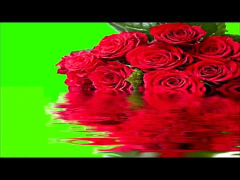 GREEN SCREEN FLOWERS ROSE,  GREETING CARD,, SONY Vegas Pro, Adobe After Effects, VIDEO EDITING, thumbnail