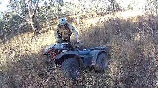 Pig hunting Western NSW