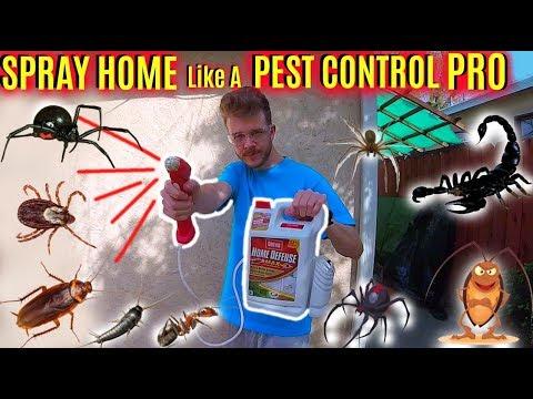 How To Spray Home Like A Pest Control Pro! -Jonny DIY