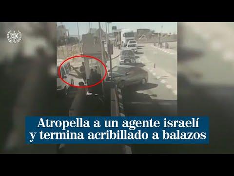 Tensión entre Israel y Palestina: un atropello a un agente termina con la muerte del conductor