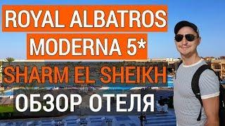 Royal Albatros Moderna 5 обзор отеля Отдых в Египте Роял альбатрос модерна 5 Шарм эль шейх 2019