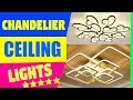 Chandelier Light / Ceiling Lights Design / Ceiling Design