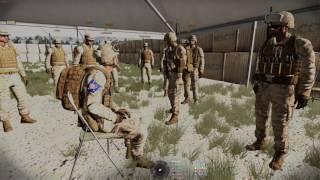 Paramarine Task Force Operation Desert Thunder