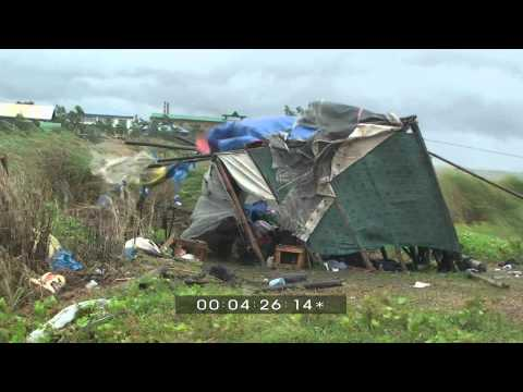 Typhoon Mirinae Extreme Weather Stock Footage Screener HDV 1440x1080 50i