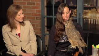 Season 4 Episode 1 - Rachel Barnhart - Wild Wings Inc.