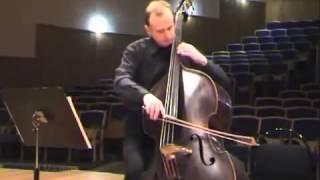 Струнные смычковые музыкальные инструменты Звучание