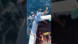2020 Bisbee's East Cape Offshore | Suerchingo | Blue Marlin