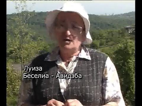 Абхазия - строна конфликта (ф)- Студия Ре