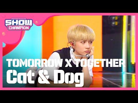 Show Champion EP.314 TOMORROW X TOGETHER - Cat & Dog