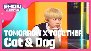 Show Champion EP.314 TOMORROW X TOGETHER - Cat & Dog