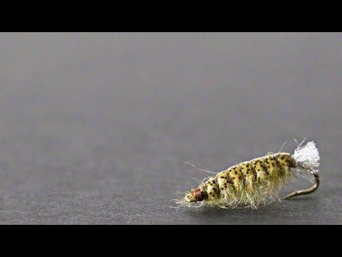 Barr's Crane Fly Larvae Fly Tying Tutorial