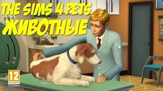 Трейлер симс 4 Животные.The Sims 4 Cats Dogs Official Trailer