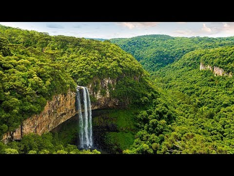 Amazon Rain Forest. Discovery Channel. Lik nd subscrib