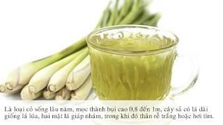 Uống Trà Sả - Bất ngờ với những lợi ích sức khỏe của trà sả