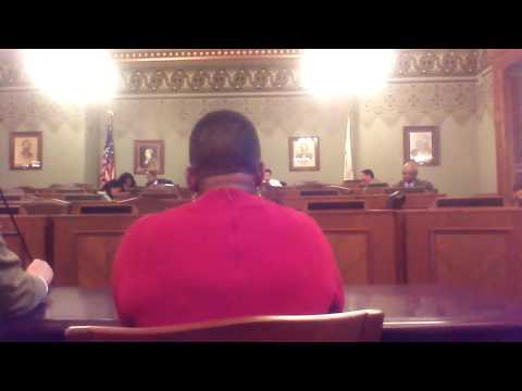 Part 4 Illinois General Assembly Committee Meeting